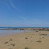 【三苫】福岡市近郊で子供が喜ぶ水遊びスポット三苫海岸