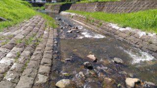 【篠栗】福岡市近郊で子供が喜ぶ川遊びスポット鳴淵ダム清流公園