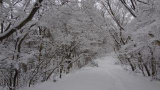 【三郡山】大寒波到来、難所ヶ滝へ – 道路/コースの凍結状況も