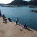 【新宮】新宮漁港 - 今日行ける、福岡市近郊の釣りポイントを教えます